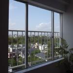 洗足池ローズベイハイツ窓からの眺望