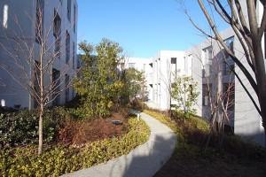 西馬込,贅沢な美しい中庭と暮らすデザイナーズ2LDKプラン【賃貸】